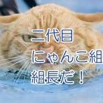 かわいい猫の切手は4月発売。極道な猫の切手は未発売w
